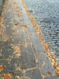 Autumn & cobblestone streets make a lovely combination